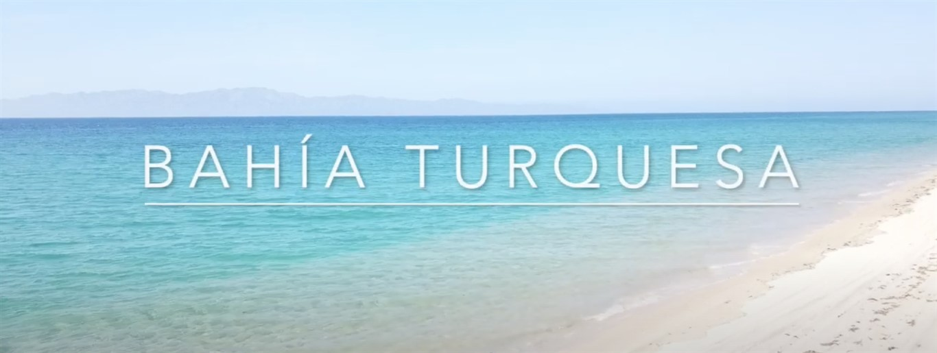 Beachfront Properties Bahia Turquesa